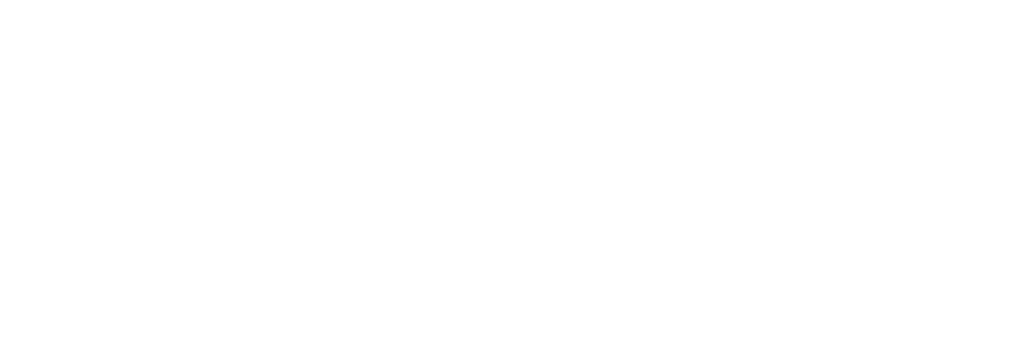 Summary of Benefits - Previous Plan Year