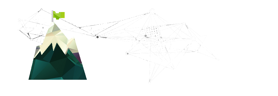 Project and Program Management